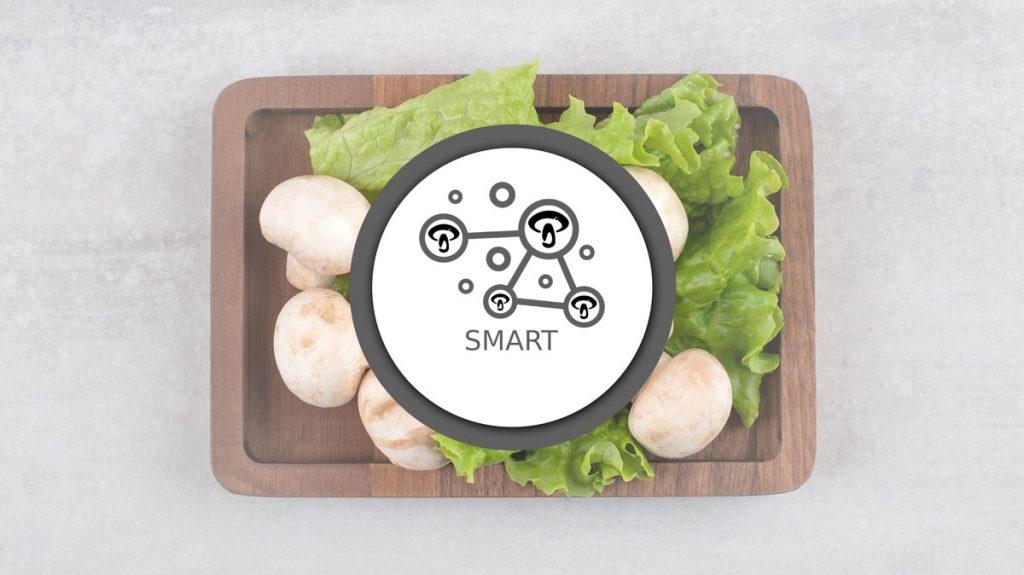 Smart-Version2